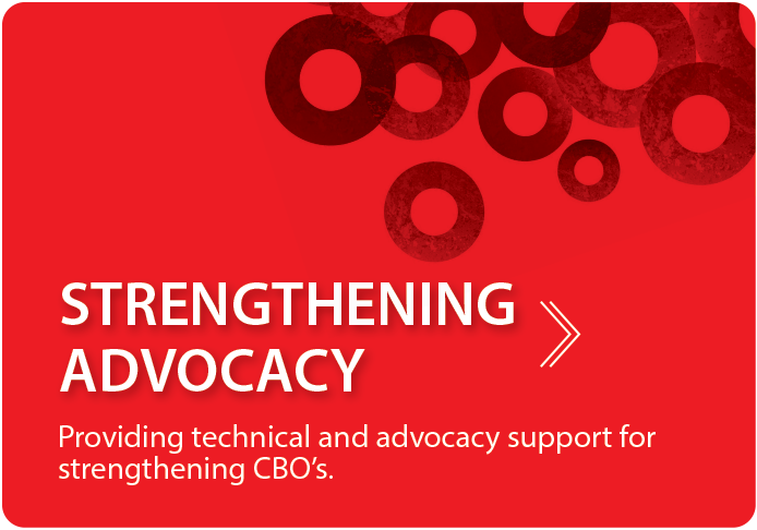 Strengthening Advocacy